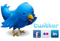 Flip catalog social network integration